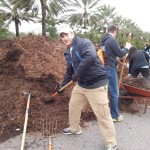 Getting mulch out of the mulch pile